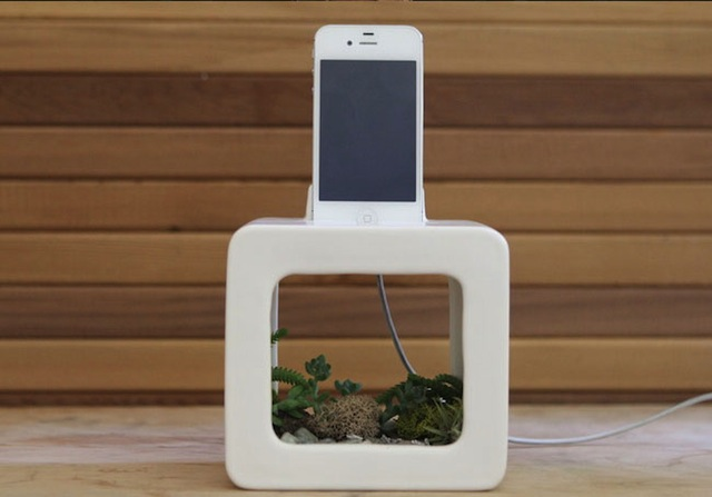 The Bloombox: Listen To Music Naturally